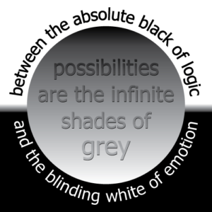 possibilities are the infinite shades of grey between the absolute black of logic and the blinding white of emotion